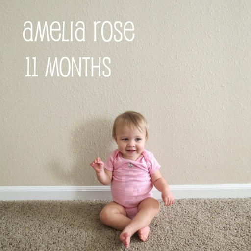 amelia11months